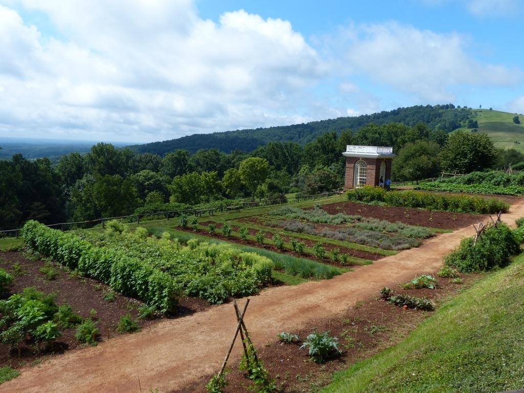 A Glimpse Into Jeffersonu0027s Garden